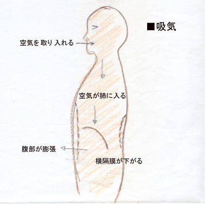 腹式呼吸のススメ